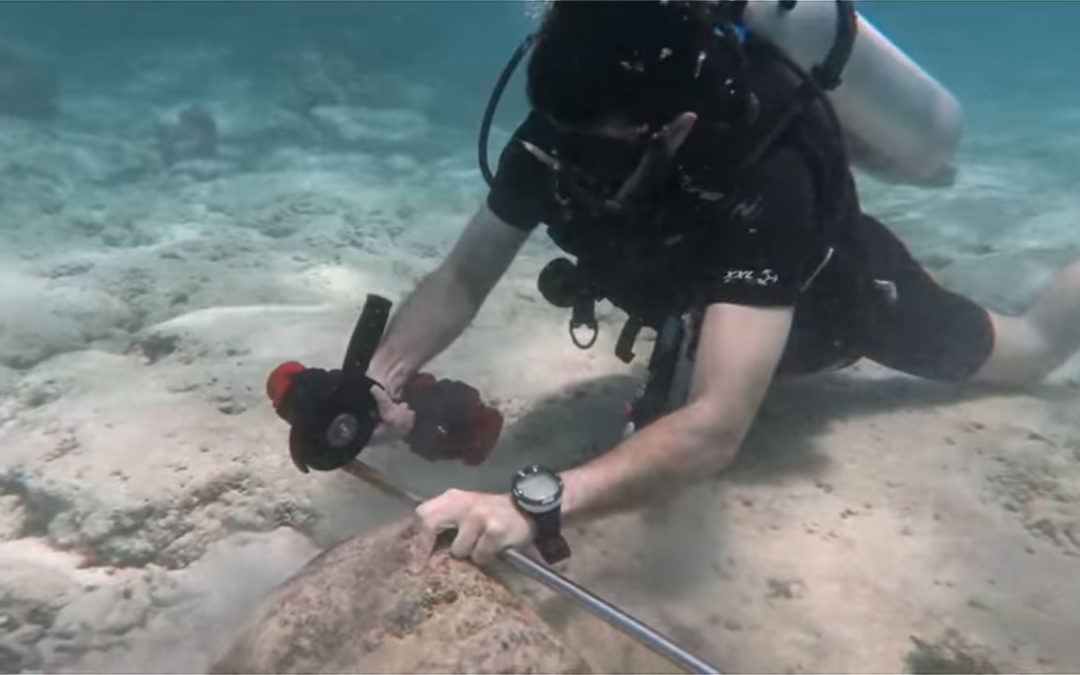 Nemo Underwater Power Tools Demo: Angle Grinder and Hammer Drill
